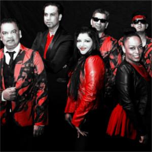Foto 4 van Latino BM Royale XXL
